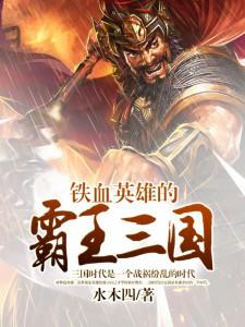 铁血英雄的霸王三国